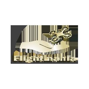Logo---Portfolio---FlightMania