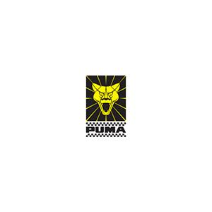Logo---Portfolio---Puma-Automoveis